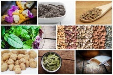 Plant Protein collage