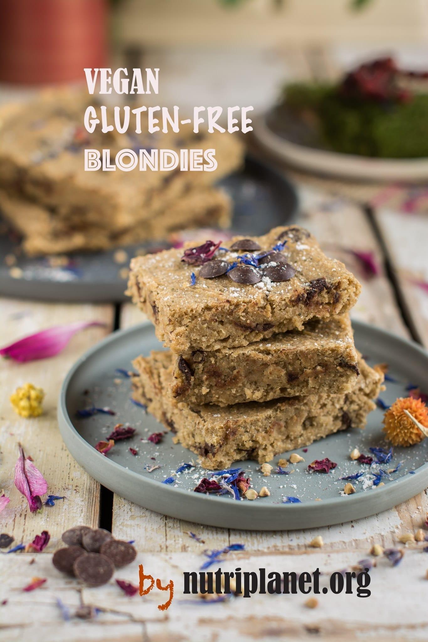 Gluten Free Vegan Blondies with chocolate chips